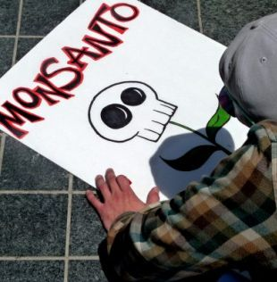 Monsanto toxic rain pours down on Canada
