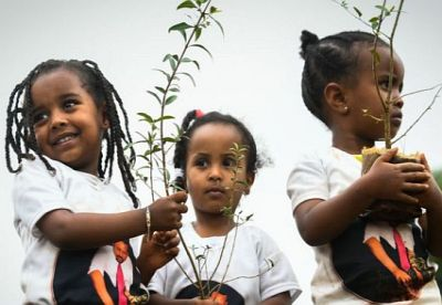 Children planting trees in Ethiopia, a country which has embraced new forests as part of its climate plan